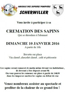 Cremation des sapins